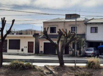La Municipalidad multó a Trasnoa por poda indebida